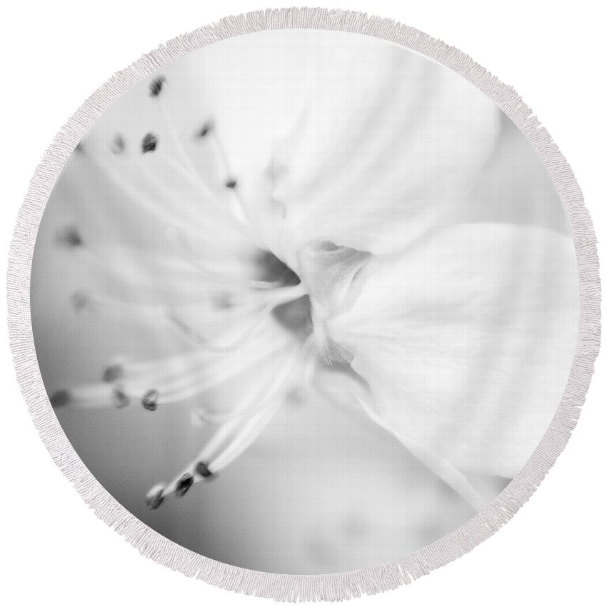B&w Round Beach Towel featuring the photograph Spring Blooms 0115 by Timothy Bischoff