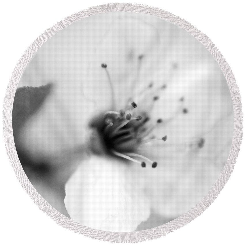 B&w Round Beach Towel featuring the photograph Spring Blooms 0134 by Timothy Bischoff