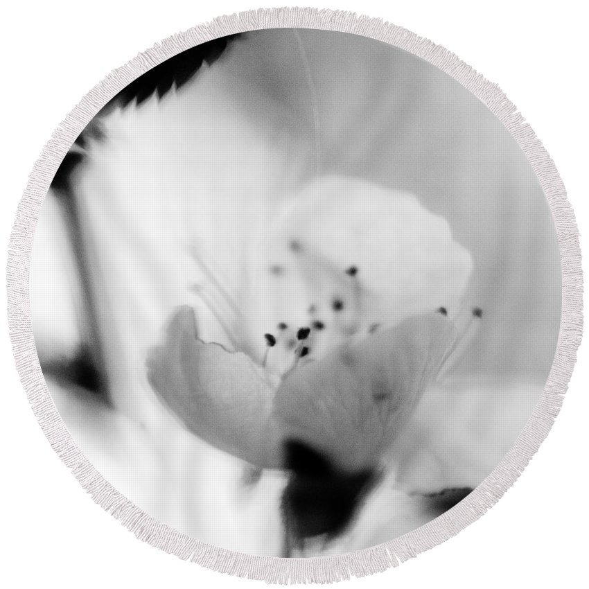 B&w Round Beach Towel featuring the photograph Spring Blooms 0189 by Timothy Bischoff