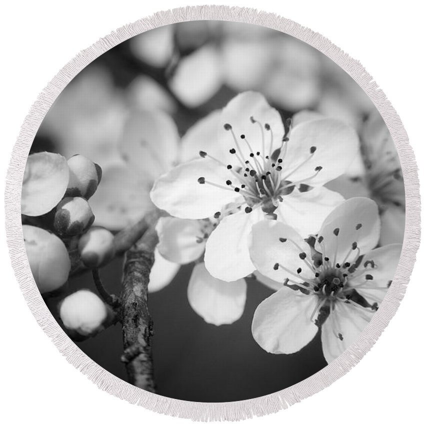 B&w Round Beach Towel featuring the photograph Spring Blooms 6690 by Timothy Bischoff