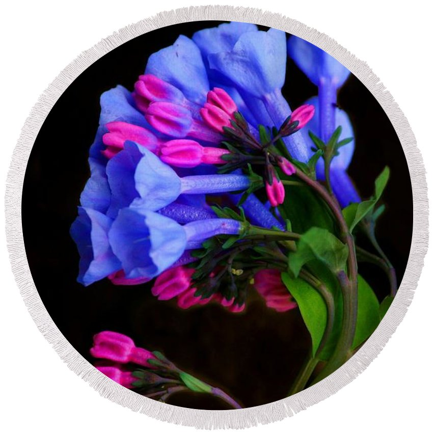 Flower Round Beach Towel featuring the photograph Spring Bluebells by John Absher