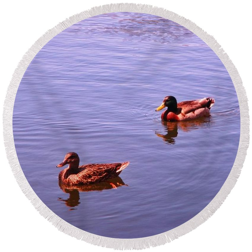 Spring Ducksnature Round Beach Towel featuring the photograph Spring Ducks by John Malone