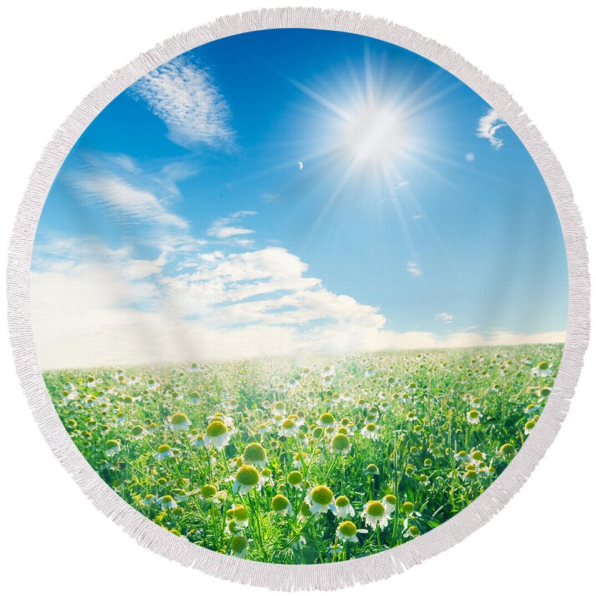 Agriculture Round Beach Towel featuring the photograph Spring Meadow Under Sunny Blue Sky by Michal Bednarek