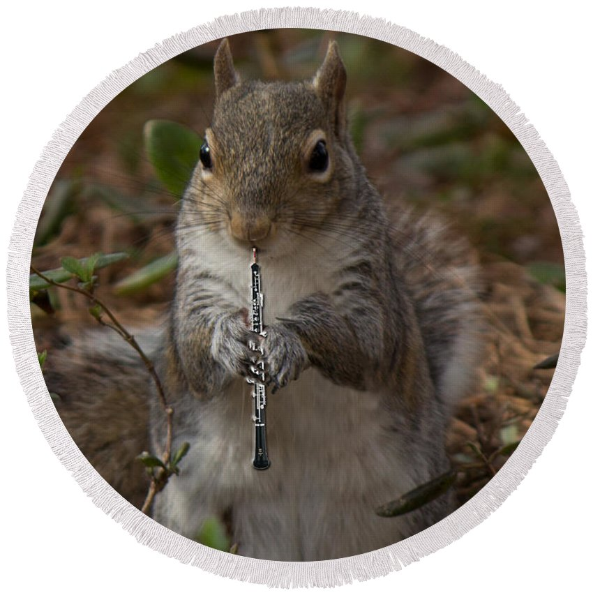 Wood Round Beach Towel featuring the photograph Squirrel With His Obo by Sandra Clark