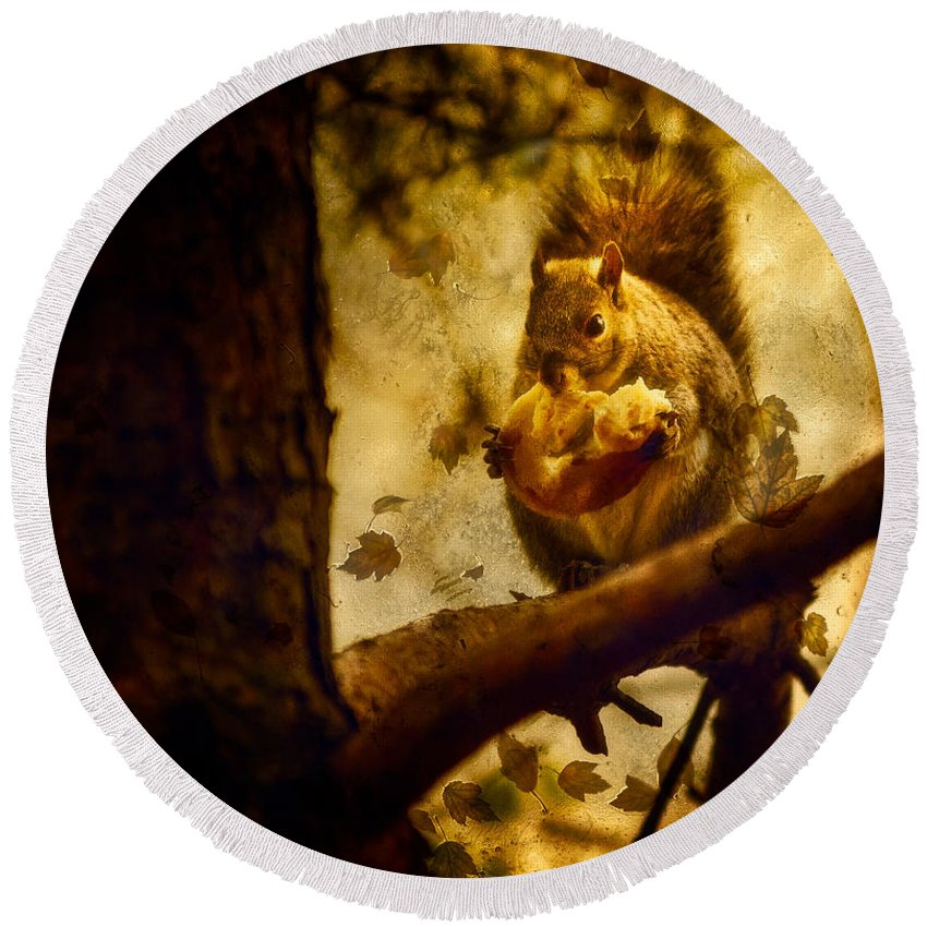 Autum Squirrel With Pear Round Beach Towel featuring the photograph Squirrel With Pear by Peter v Quenter