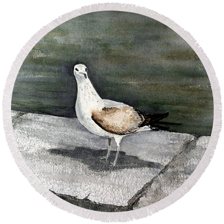 Bird Round Beach Towel featuring the painting St Augustine Gull by Sam Sidders