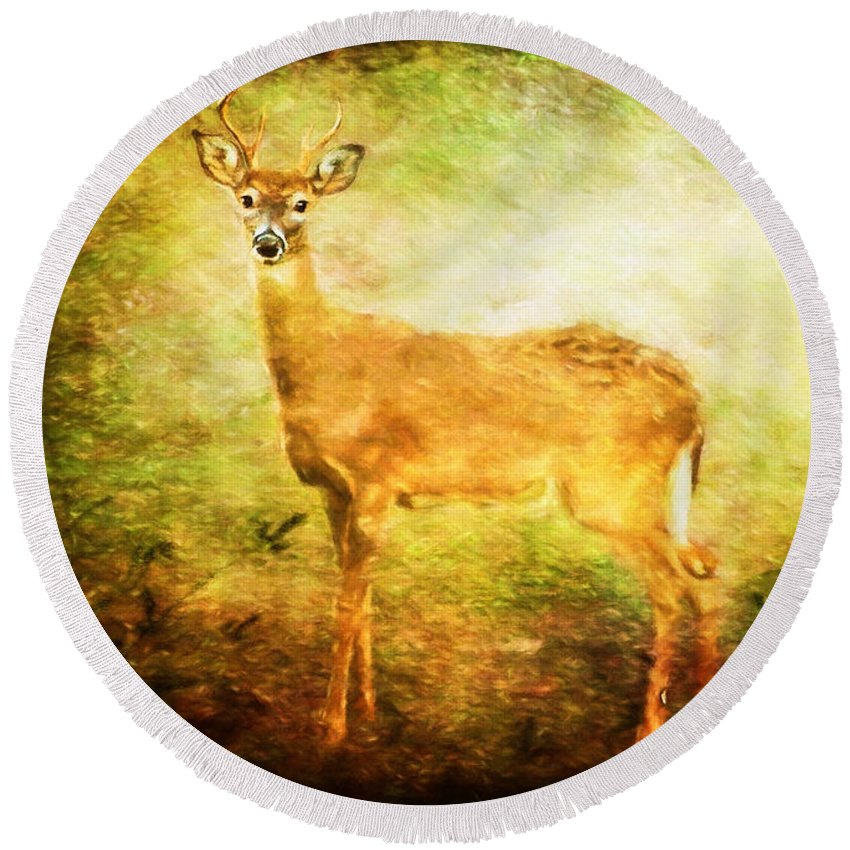 Deer Round Beach Towel featuring the photograph Startled by Lois Bryan