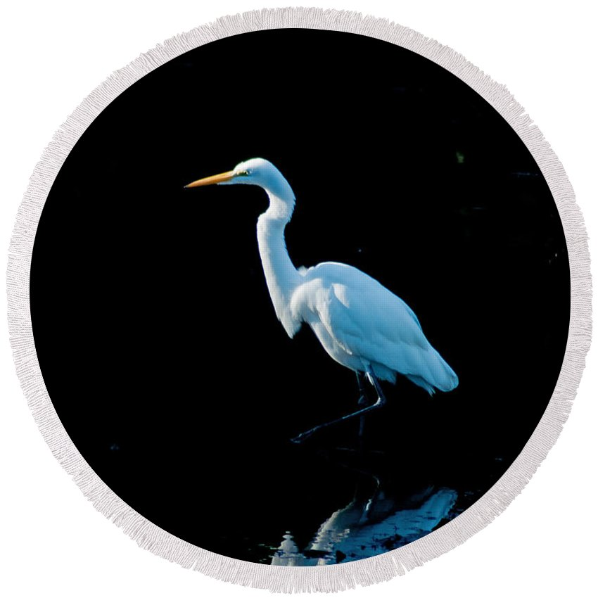 Wings Round Beach Towel featuring the photograph Stately Snowy Egret by Stephen Whalen