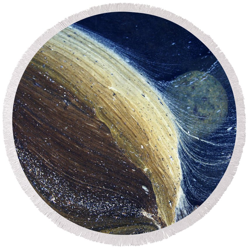 Scum Round Beach Towel featuring the photograph Stream Astronomy 1 by Robert Woodward