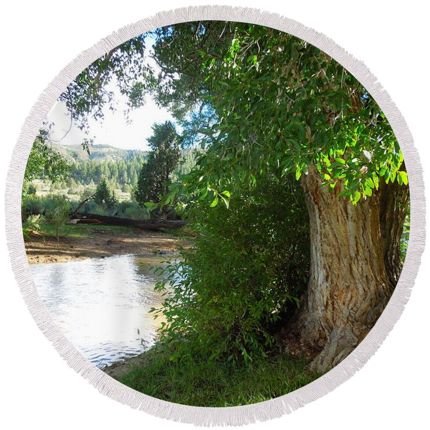 Tree Round Beach Towel featuring the photograph Strength Beside The Stream by Donna Jackson