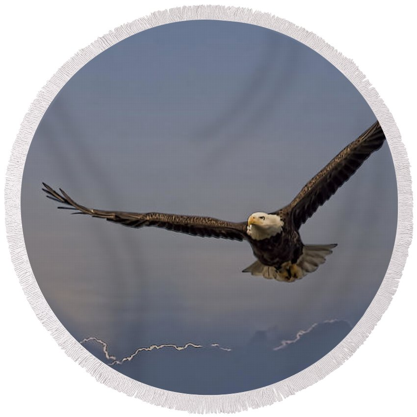 Eagle Round Beach Towel featuring the photograph Strength Of An Eagle by Deborah Benoit