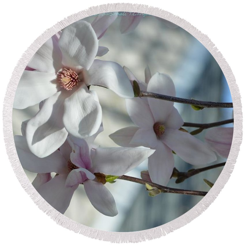 Sublime Magnolia Round Beach Towel featuring the photograph Sublime Magnolia by Sonali Gangane