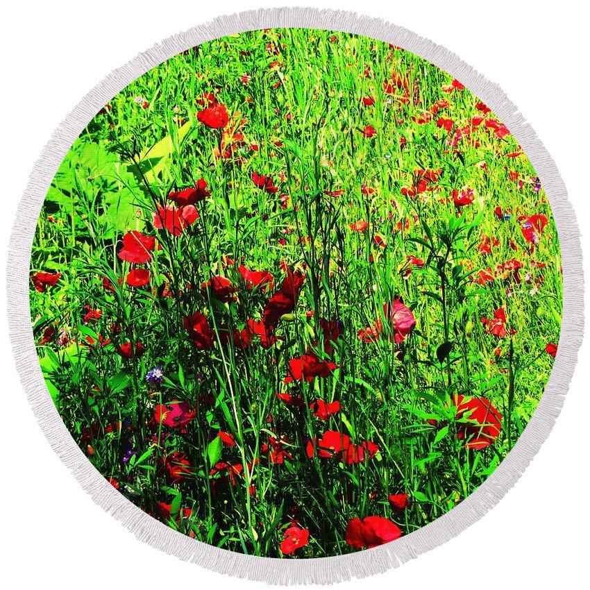 Flowers Round Beach Towel featuring the photograph Summer Meadow by Callan Art