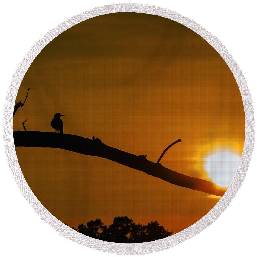 Sunset Round Beach Towel featuring the photograph Summer Sunset by John Hannan