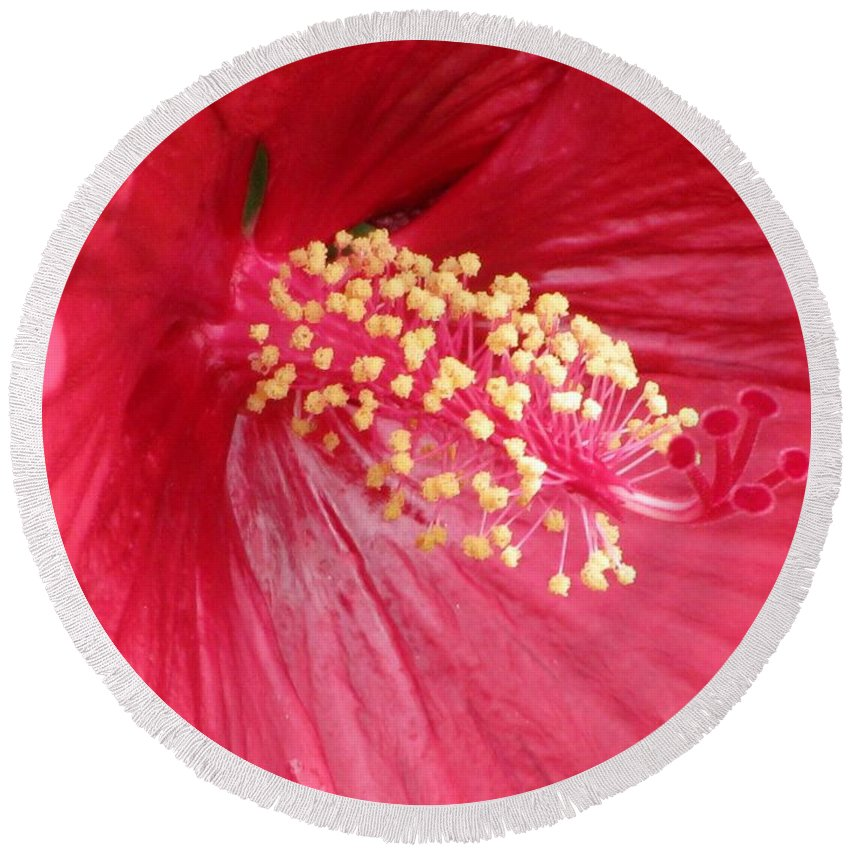 Mallow Round Beach Towel featuring the photograph Summerific Cranberry Crush 01 by Pamela Critchlow