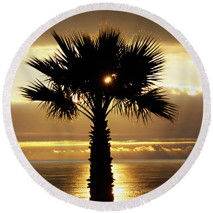 Royal Palms Round Beach Towel featuring the photograph Sun And Palm And Sea by Joe Schofield