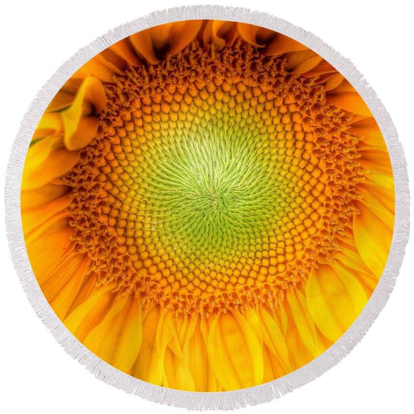 Yellow Sun Flower 2 Round Beach Towel featuring the photograph Sun Flower Power by Susan Garren