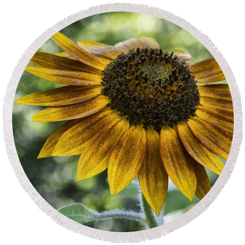 Sunflower Round Beach Towel featuring the photograph Sunflower Bokeh by Erika Fawcett