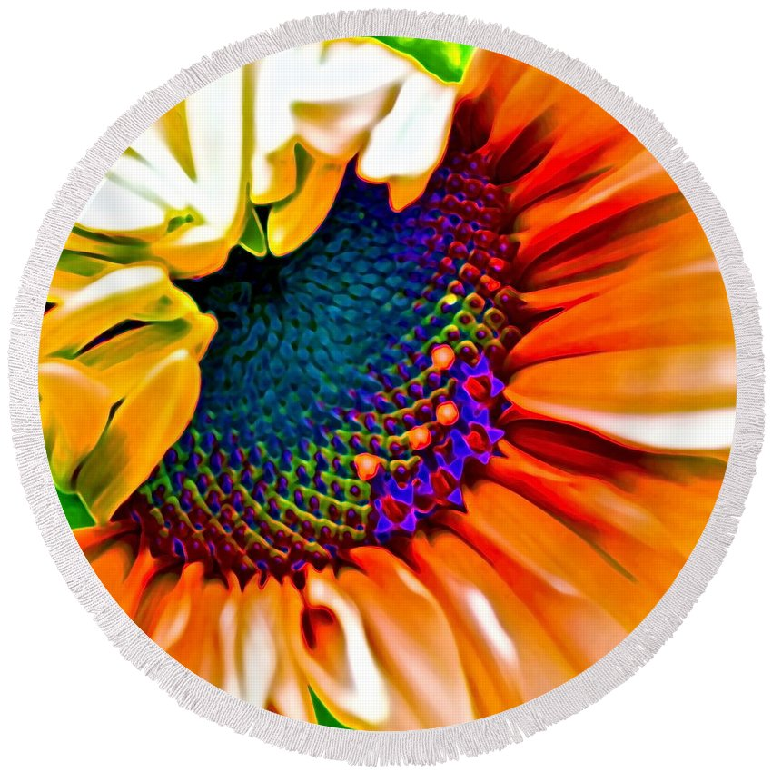 Photographs Round Beach Towel featuring the photograph Sunflower Crazed by Gwyn Newcombe