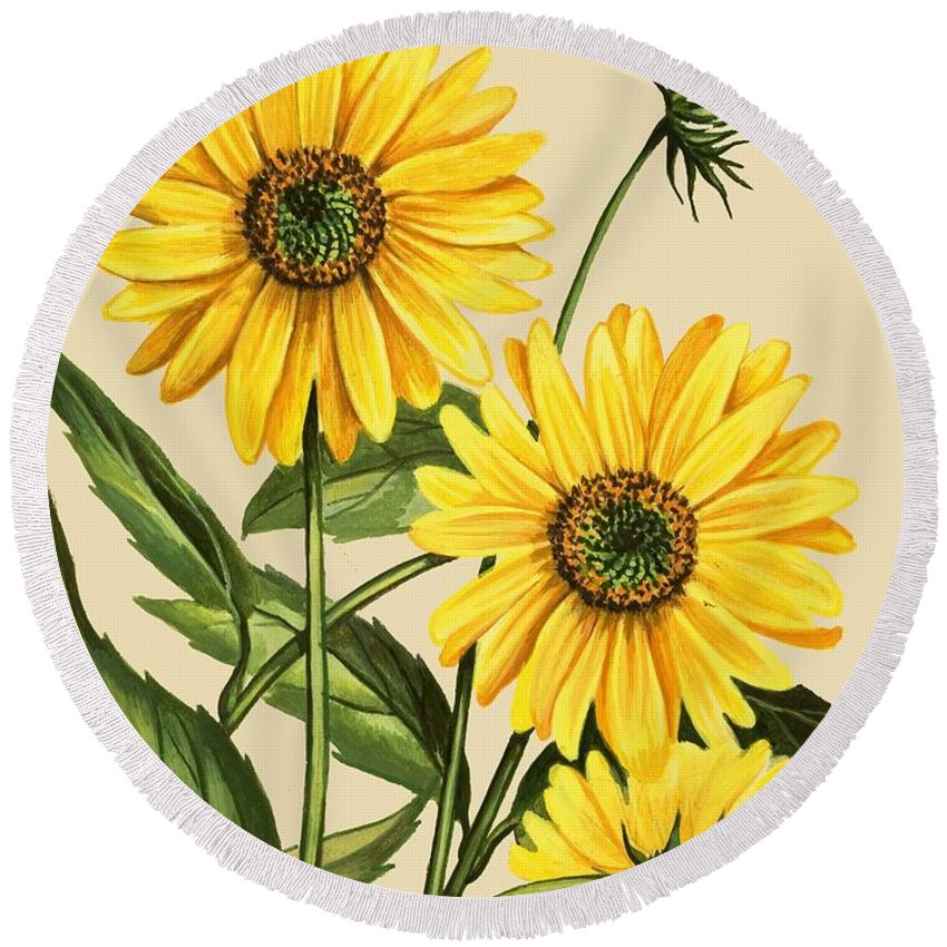 Sunflower Round Beach Towel featuring the drawing Sunflower by English School