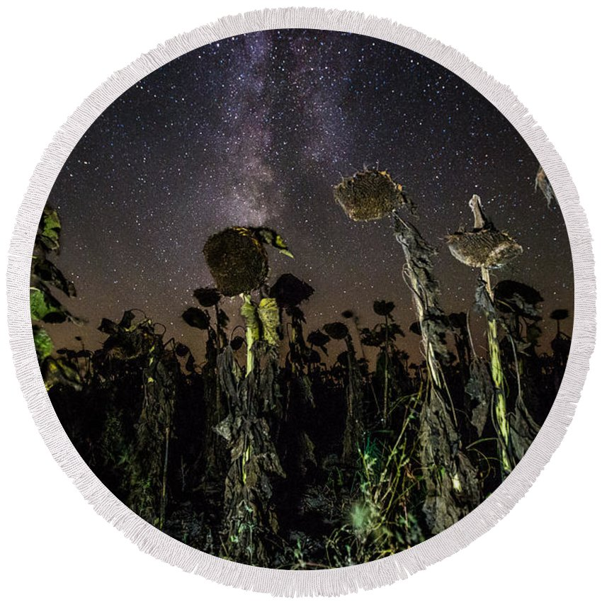 Milky Way Round Beach Towel featuring the photograph Sunflower Field At Night by Aaron J Groen