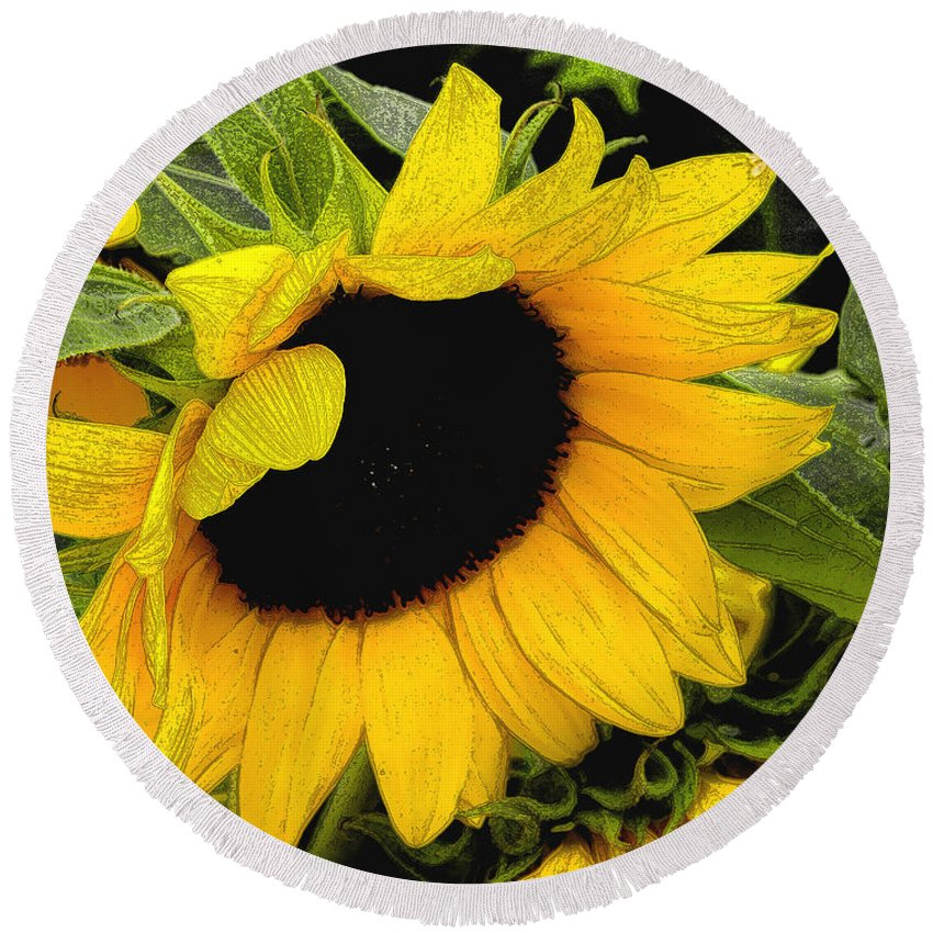 Sunflower Round Beach Towel featuring the photograph Sunflower by James C Thomas