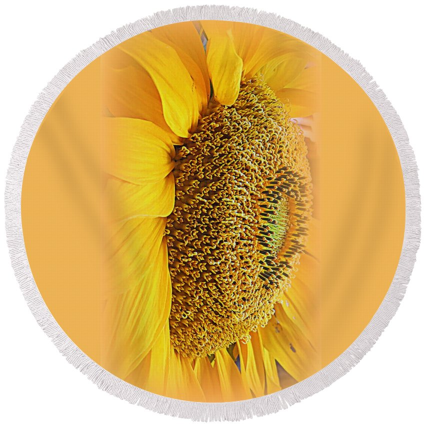 Macro Round Beach Towel featuring the photograph Sunflower by Kay Novy