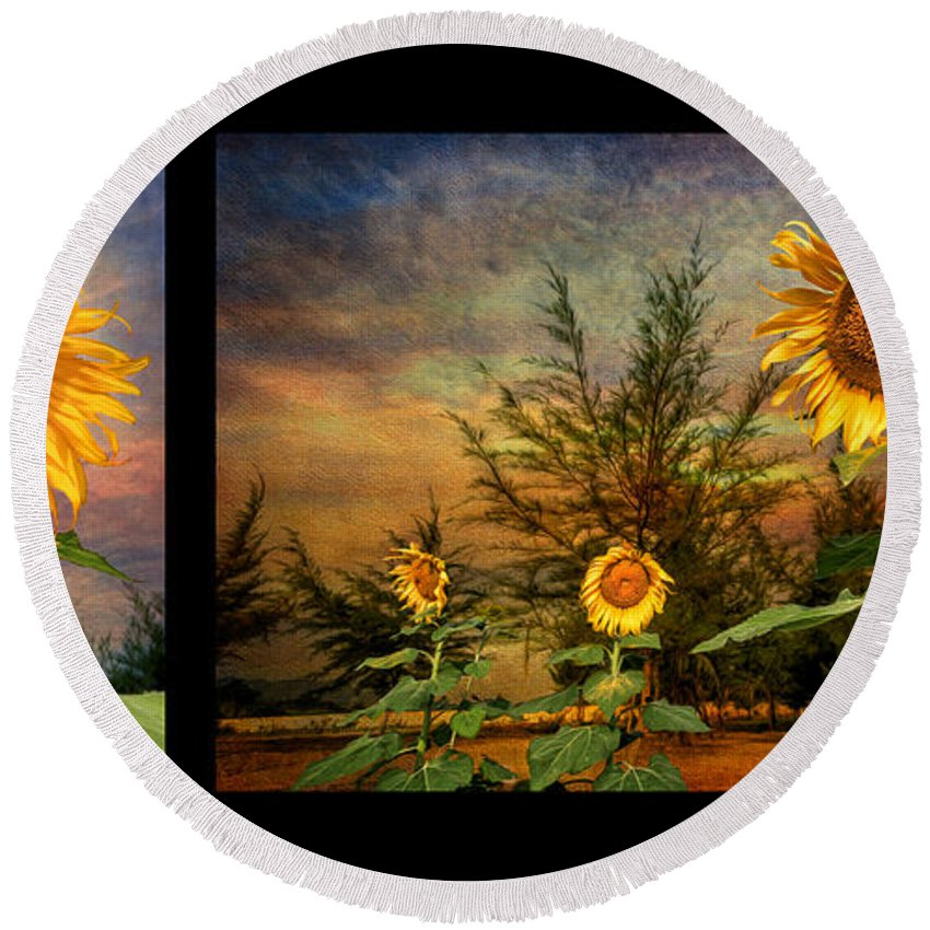 Sunflower Round Beach Towel featuring the photograph Sunflowers by Adrian Evans