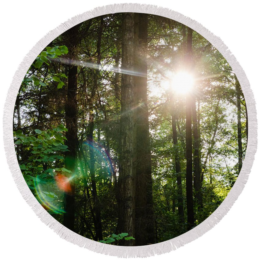 Forest Round Beach Towel featuring the photograph Sunlight Forest by Pati Photography