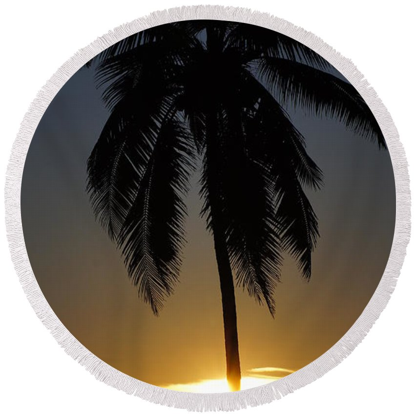 Beach Round Beach Towel featuring the photograph Sunrise And Palm Tree by Paul Wilford