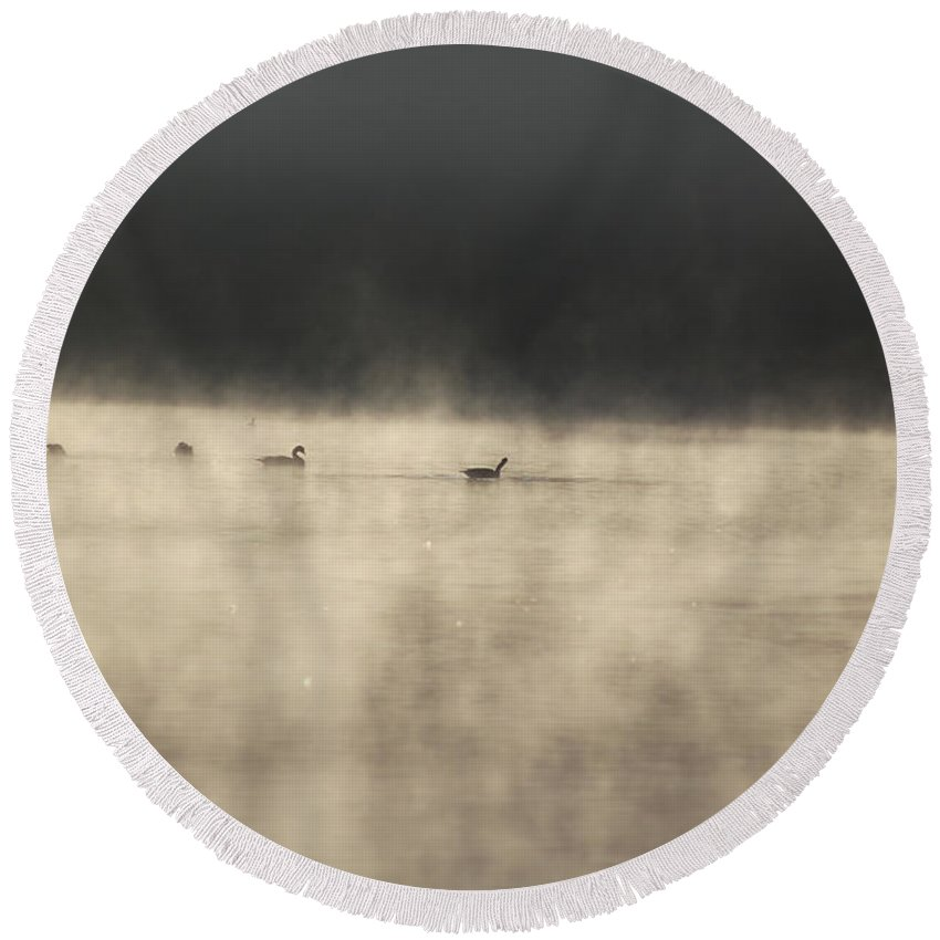 Lake Photographs Round Beach Towel featuring the photograph Sunrise Geese by Melissa Petrey