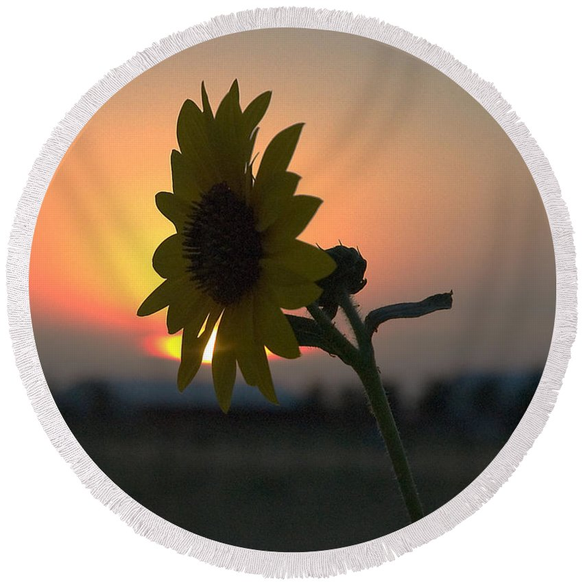 Sunset And Sunflower In Vertical Format Round Beach Towel featuring the photograph Sunset and Sunflower by Mae Wertz