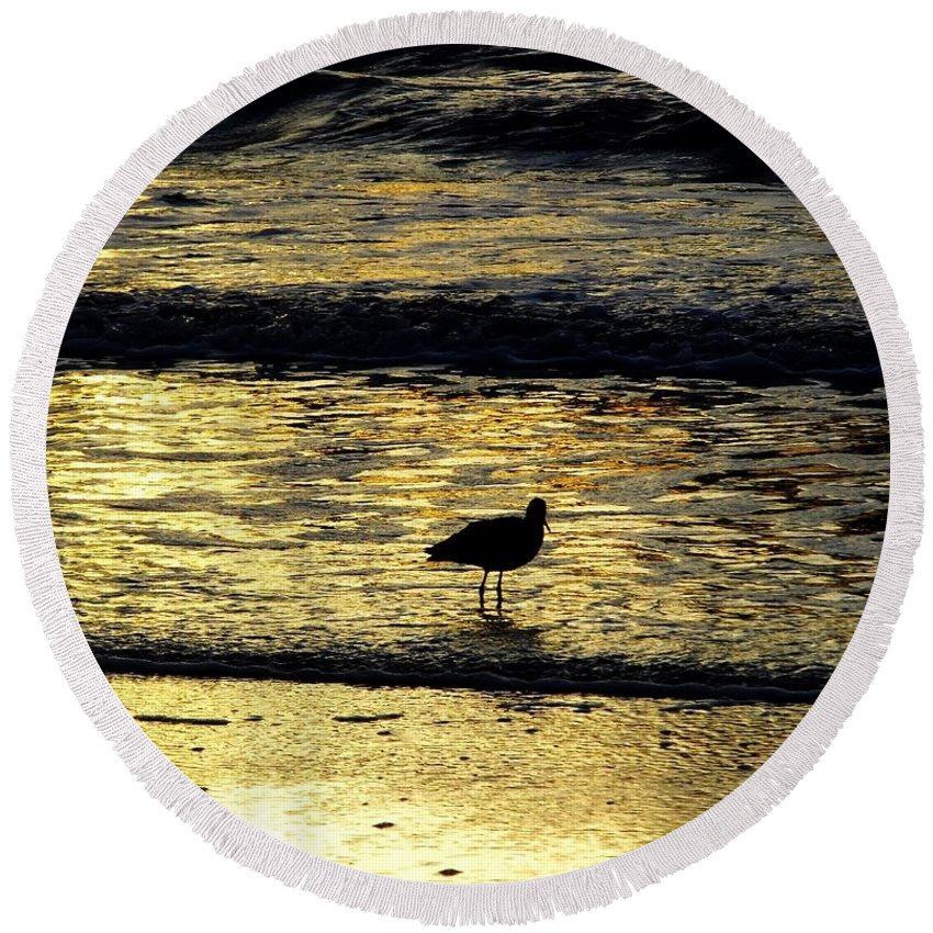 Bird Round Beach Towel featuring the photograph Sunset Bird by D Hackett