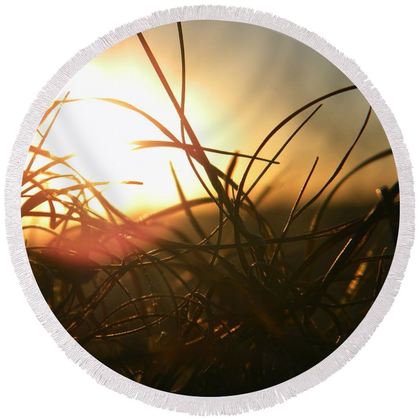 Grass Round Beach Towel featuring the photograph Sunset Grass 1 by Nathanael Smith