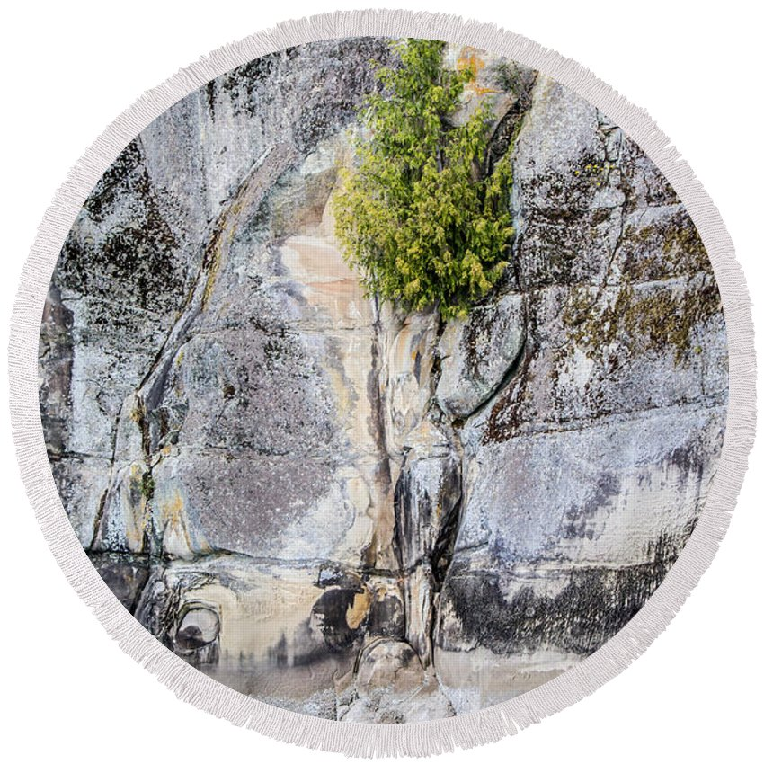 Natural Art Round Beach Towel featuring the photograph Surviving The Elements by Alanna DPhoto