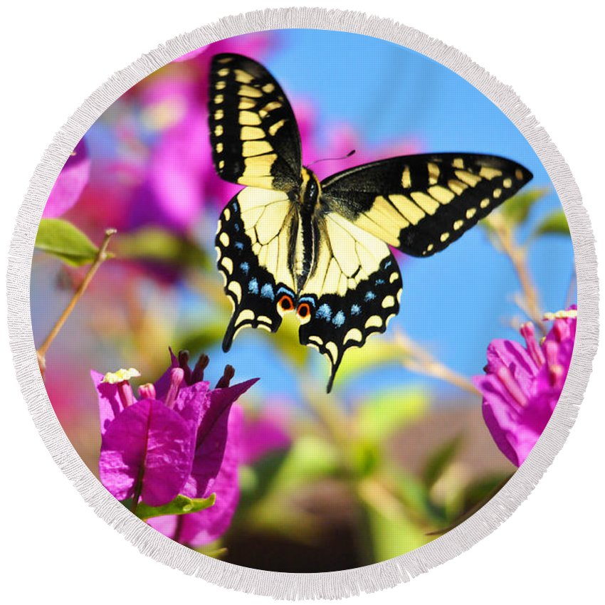 Flowers Round Beach Towel featuring the photograph Swallowtail In Flight by Lynn Bauer
