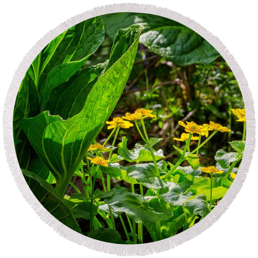Marigold Round Beach Towel featuring the photograph Swamp Bouquet by Bill Wakeley