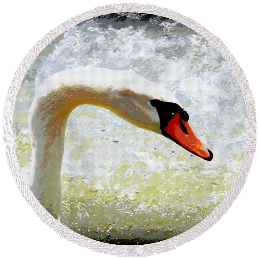 Swan Round Beach Towel featuring the photograph Swan - Beautiful - Elegant by Travis Truelove