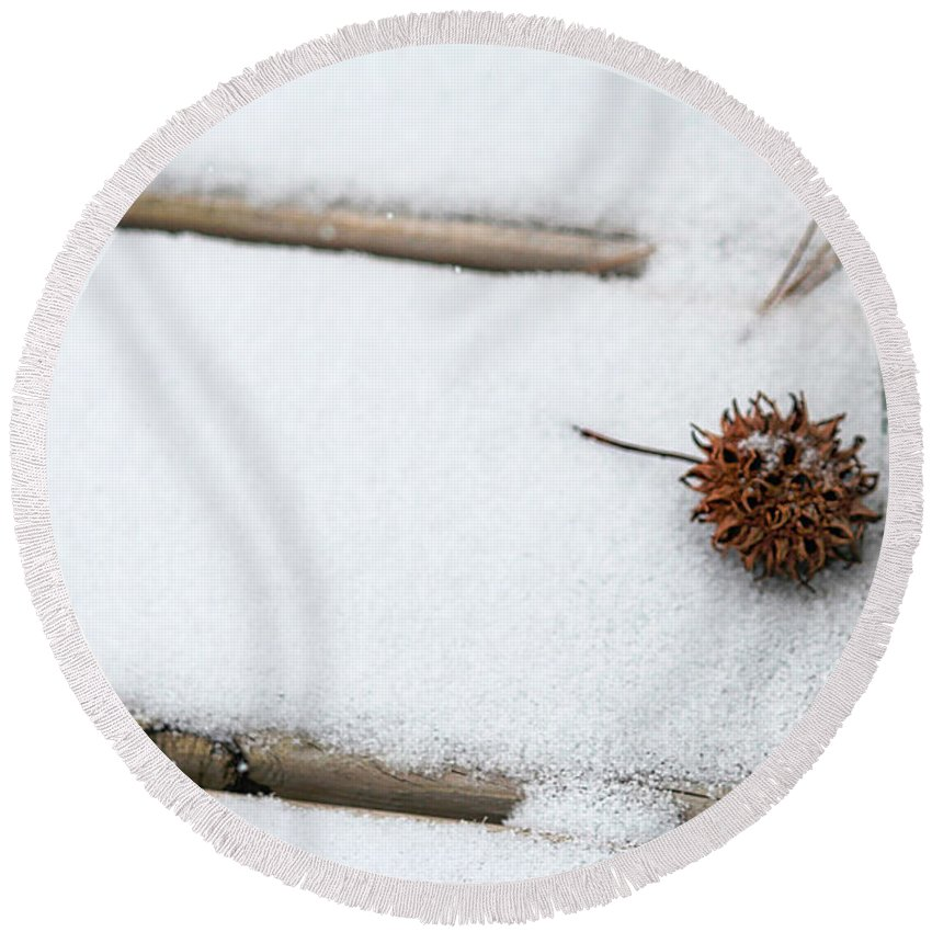 Sweetgum Round Beach Towel featuring the photograph Sweetgum Seed Pod In The Snow by Karin Everhart