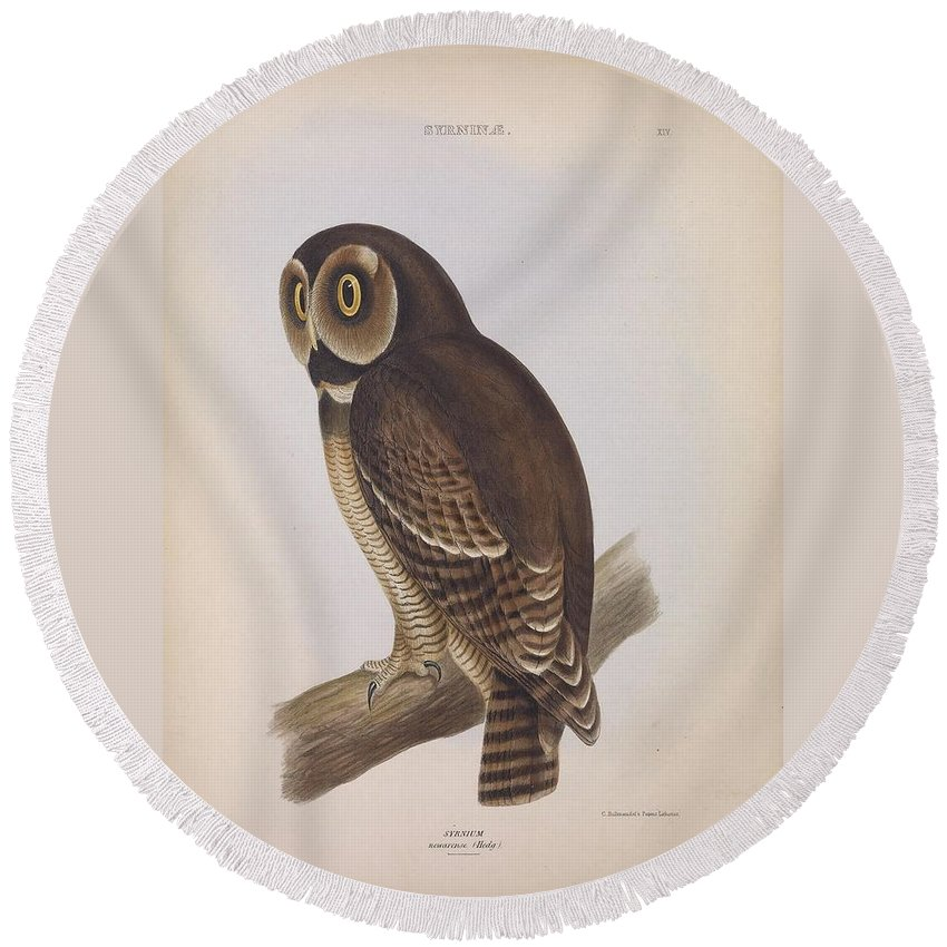 Audubon Round Beach Towel featuring the painting Syrnium Owl by Philip Ralley