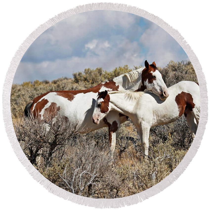Horses Round Beach Towel featuring the photograph Take Me As I Am by Athena Mckinzie