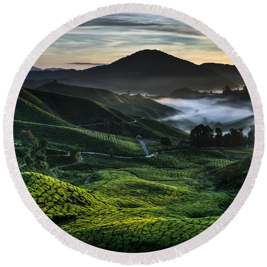 Tea Plantation Round Beach Towel featuring the photograph Tea Plantation At Dawn by Dave Bowman