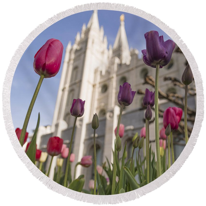 Temple Tulips Round Beach Towel featuring the photograph Temple Tulips by Chad Dutson