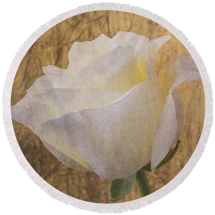 Textured Round Beach Towel featuring the photograph Textured Rose by Garry Gay