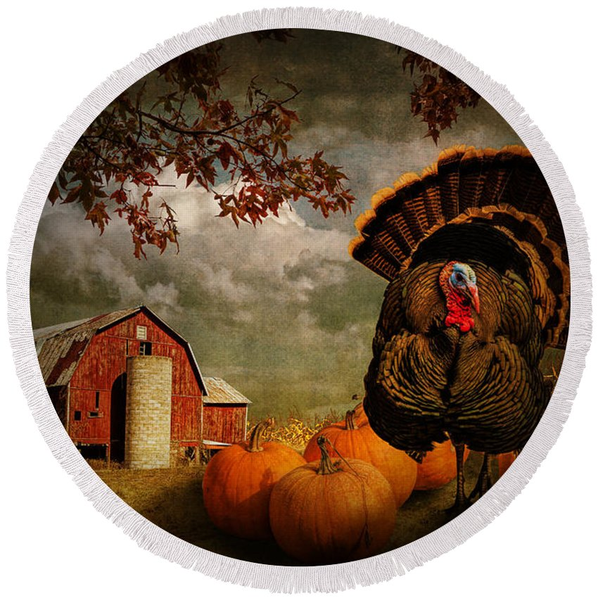Feather Round Beach Towel featuring the photograph Thanksgiving Turkey Among Pumkins by Randall Nyhof