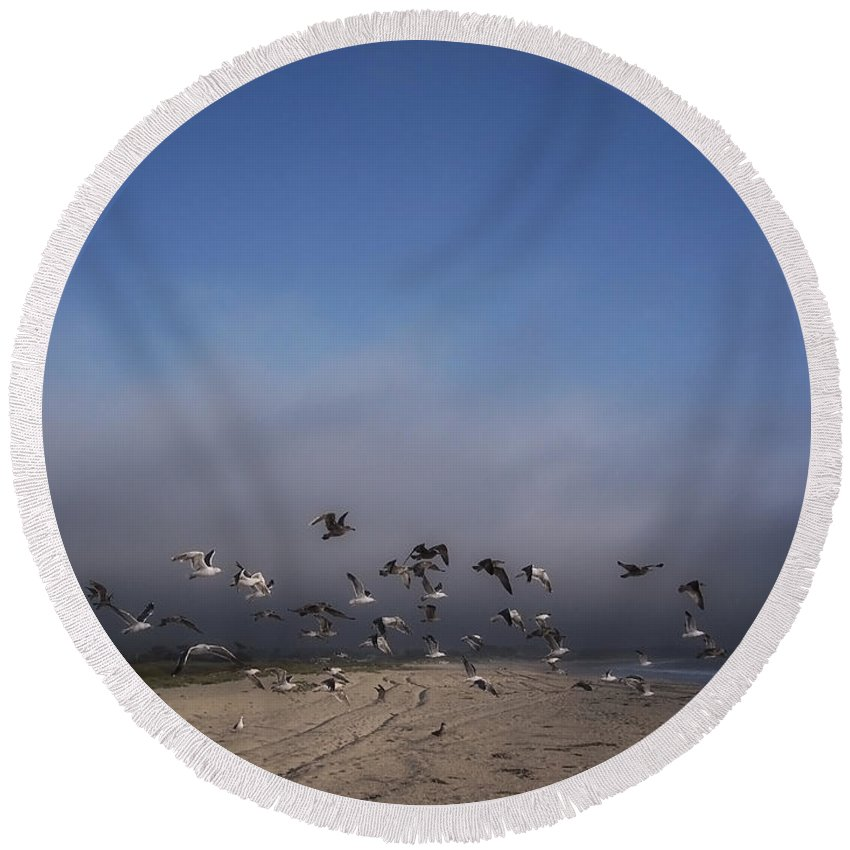 Seagulls Round Beach Towel featuring the photograph The Birds by Donna Blackhall
