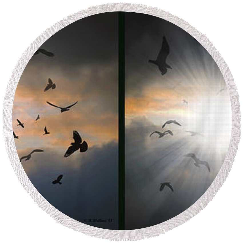 3d Round Beach Towel featuring the photograph The Call - The Caw - Gently Cross Your Eyes And Focus On The Middle Image by Brian Wallace