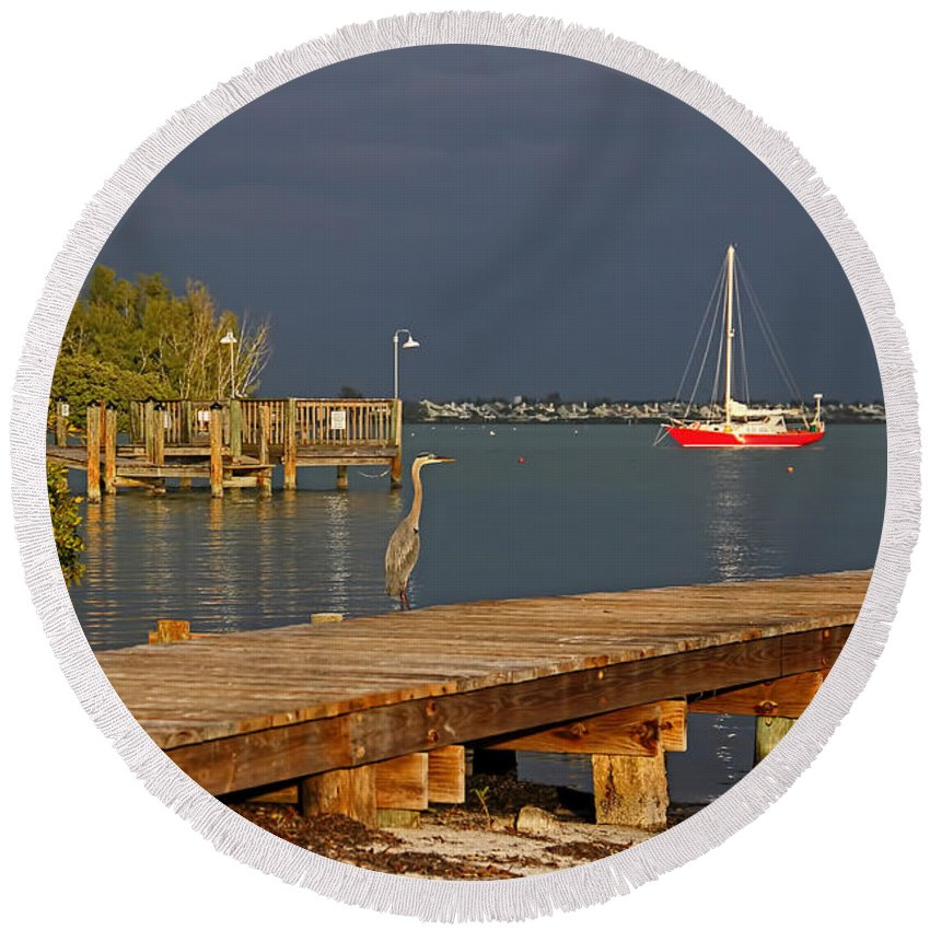 Great Blue Heron Round Beach Towel featuring the photograph The Casual Observer by HH Photography of Florida