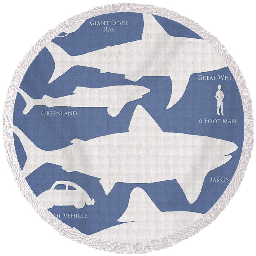 Sharks Round Beach Towels