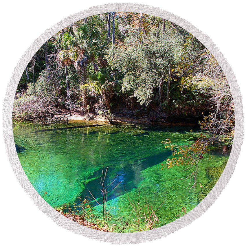 Blue Springs Round Beach Towel featuring the photograph The Crack by Nancy L Marshall